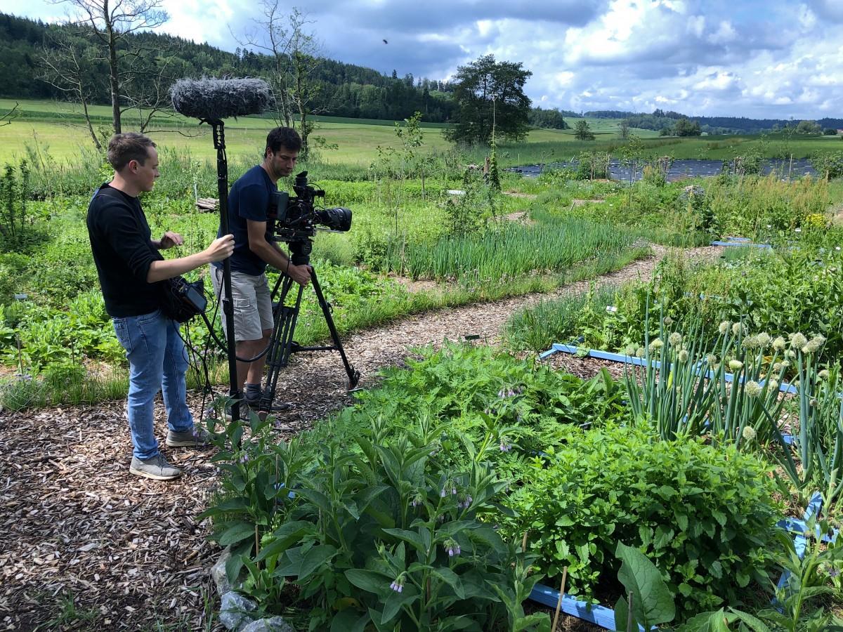 Der Waldgarten zum ersten Mal gefilmt